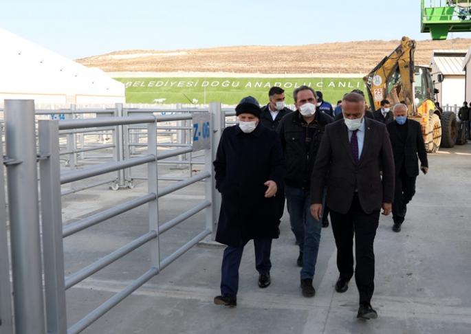 Başkan Sekmen, Canlı Hayvan Pazarı'nı gezdi.