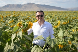 Erzurum'da çiftçilere 300 milyon TL destek