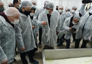 Pakdemirli: Süt kalitesine göre fiyatlandırılmalı